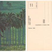 http://cubanos.ru/_data/gallery/foto007/thumbs/thumbs_meao30.jpg