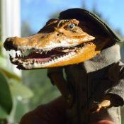 Крокодильчик, фото 2