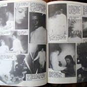 Страницы из книги - 4
