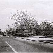 1973. Пятое авеню.