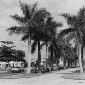 1964, фото 24