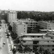 1981-1982. Фото 6