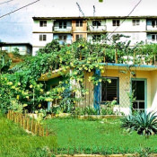 1977-1981. Есть и такие дома у кубинцев.
