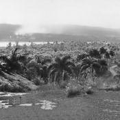 Панорамы Моа 1964-1966 годов, фото 3.