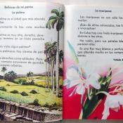Страницы 74-75