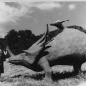Сантьяго-де-Куба. 1987. Долина динозавров. Галина Андреева.
