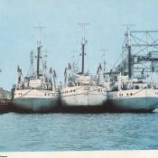 52. Unidad de la flota pesquera