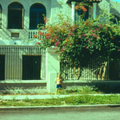 http://cubanos.ru/_data/gallery/foto063/thumbs/thumbs_hbp3.jpg