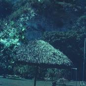 1968-1970. Зона отдыха «Чайка», фото 1