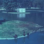 1968-1970. Зоопарк, обезьяний остров, фото 2