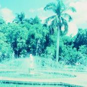 1968-1970. Парк Rio Cristal (Кристальная река), фото 8