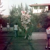 1980-1983. Роло