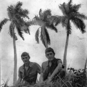 1975-1976. На фоне пальм