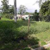 Баня батальона, фото 1