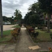 Около школы. Фото 2