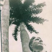 http://cubanos.ru/_data/gallery/foto075/thumbs/thumbs_tk10.jpg