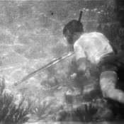 Подводная охота, фото 1