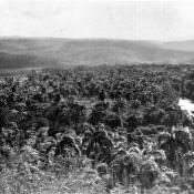 Панорамный снимок Моа: слева-направо, 1 из 7