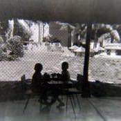 На территории зоны отдыха «Чайка», фото 3