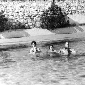 1963-1964. В бассейне «Чайки», фото 3
