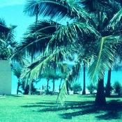 1968-1970. Варадеро, фото 3