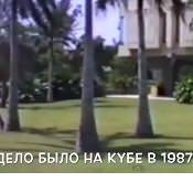 Фильм «Становление», 1987 год