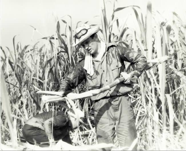 Кара-Мурза Сергей. Советский человек на Кубе.
