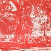 Дерево мира. Сантьяго-де-Куба. Титул.
