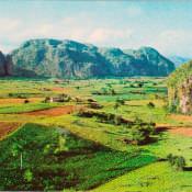 Долина Виньялес. Титул.