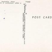 Буклет «Кабаре Тропикана», открытка 8, обратная сторона