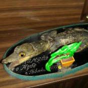 Крокодильчик на подставке