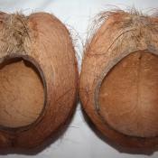 159. Маски львов, из половинок кокосовых орехов. Вид сзади.