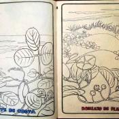 Стр. 8-9. «mate de costa» (матовый берег) и «boniato de playa» (картофельный пляж)