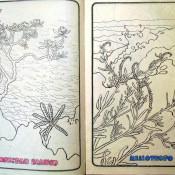 Стр. 10-11. «franch: pan blanco» (французский белый хлеб) и «heliotropo» (гелиотроп (цветок))
