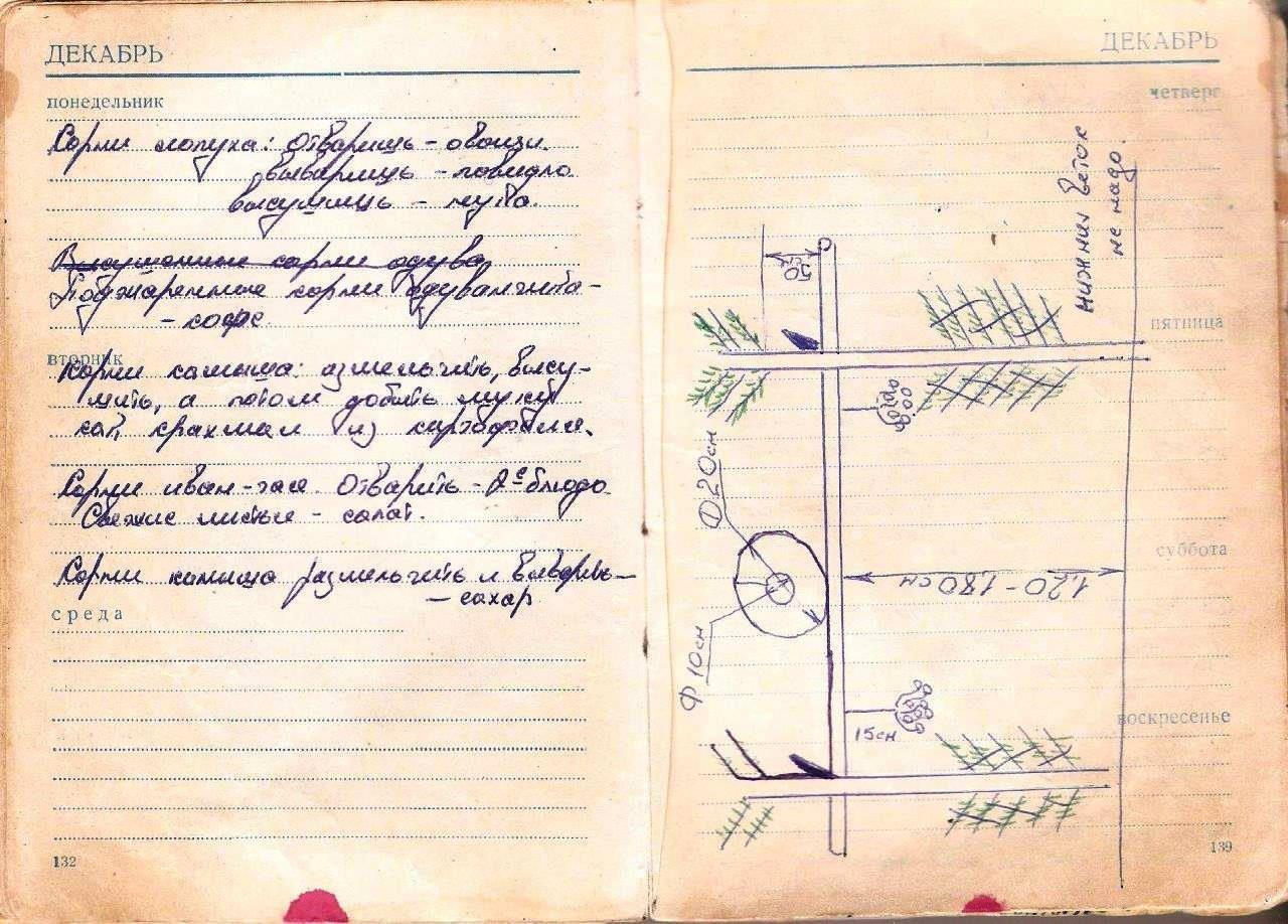 http://cubanos.ru/_data/gallery/foto031/ns043.jpg