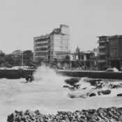 1962-1964, фото 7