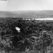 Панорамы Моа 1964-1966 годов, фото 1.