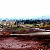 1983-1985. Роло в дождь.