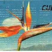 154. 1991. Календарь. Оборотная сторона