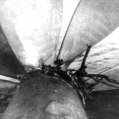 055. Американская антенна на винте подлодки К-324.