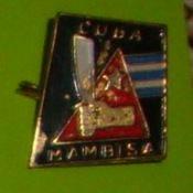 Мамби́сас (mambisаs) — название повстанцев, боровшихся за независимость Кубы от испанского владычества в XIX веке в ходе Десятилетней, Малой, Войны за независимость и Испано-американской войны.