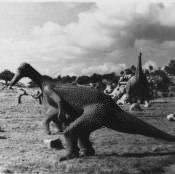 Сантьяго-де-Куба. 1987. Долина динозавров. 1987