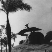 193. Сантьяго-де-Куба. 1987. Долина динозавров.
