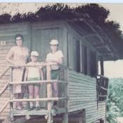 Баракоа. 1982-1984. Плантации какао. 1