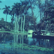 1968-1970. Парк Rio Cristal (Кристальная река), фото 1