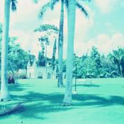 1968-1970. Парк Rio Cristal (Кристальная река), фото 5