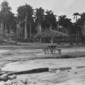 1963. Отдых в Кабаньясе, фото 3