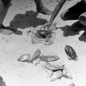 1965. На пляже Ороско, фото 1