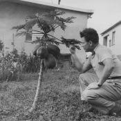 Сафронов Степан Михайлович, 1962-1964, Торренс, Новая Деревня