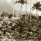 Кубинский военнослужащий.